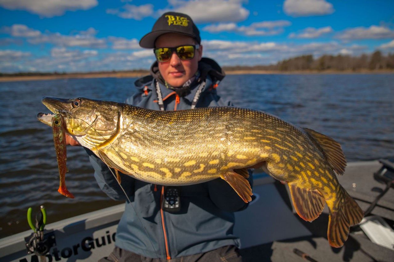 Go For Big Pike